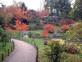 Jardin botanique de meise printemps a grand bigard for Jardin japonais hasselt 2016